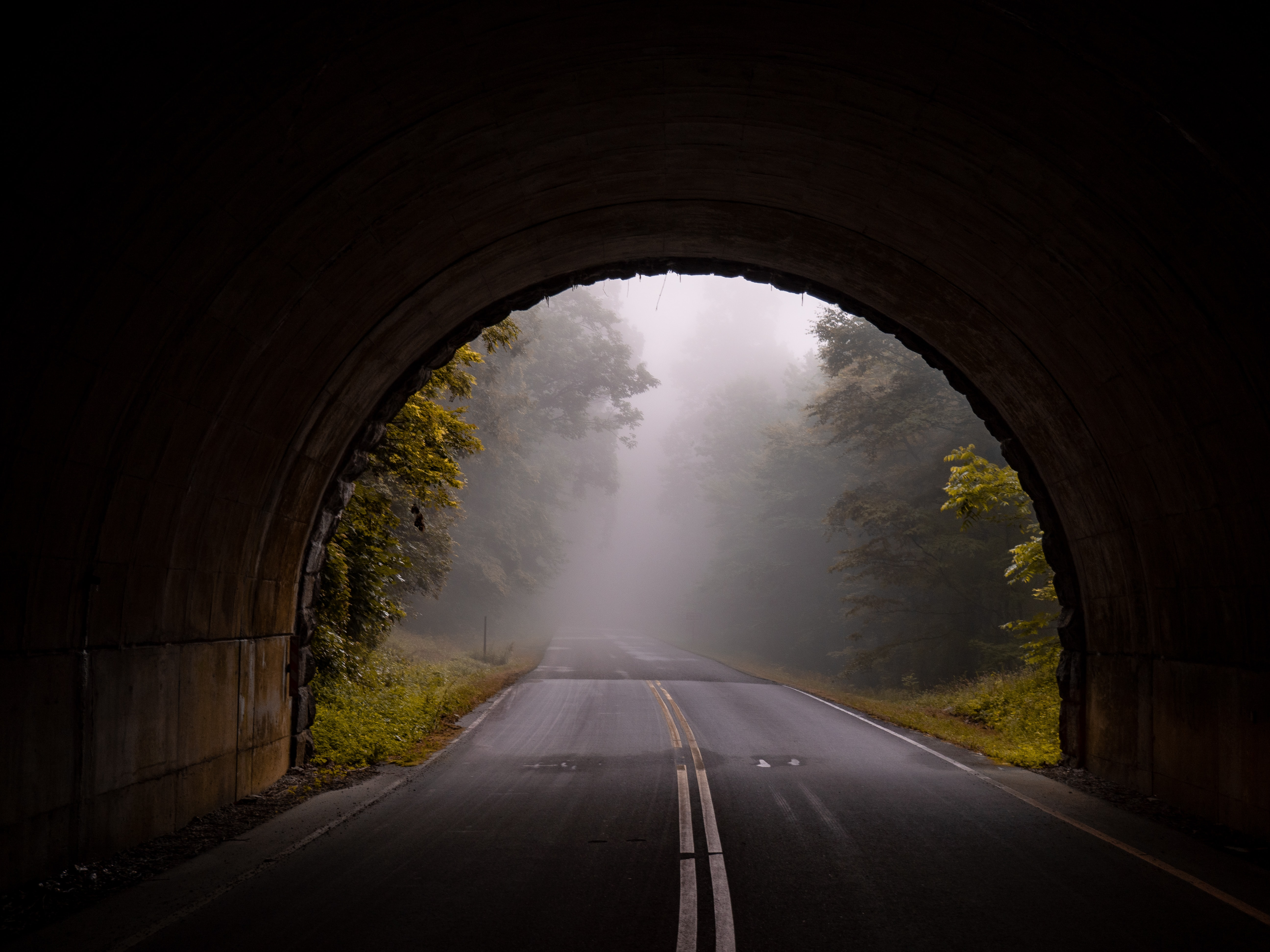 Haciendo que tu ambiente de desarrollo esté disponible en internet usando tunneling